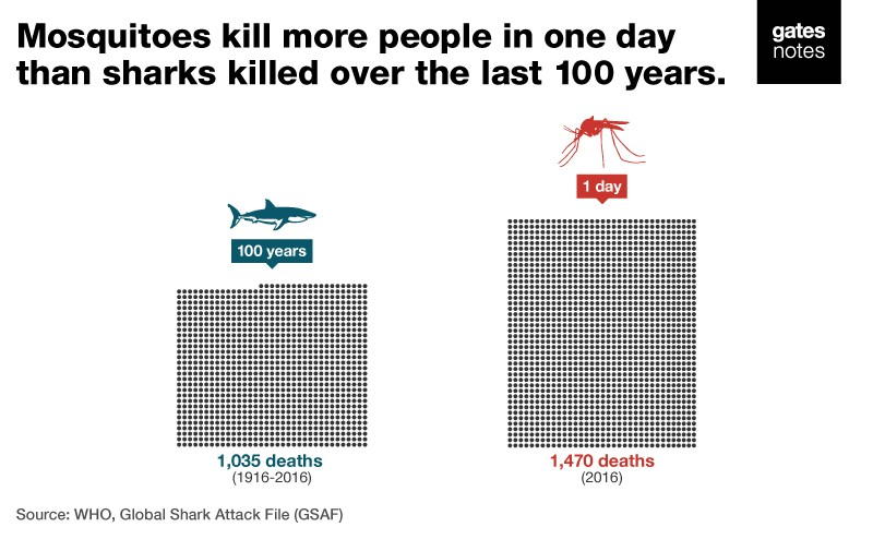 A graph showing the number of people killed by sharks in 100 years compared to mosquitoes in one day