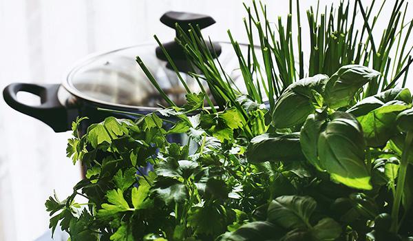 Les herbes aromatiques repoussent les moustiques naturellement.