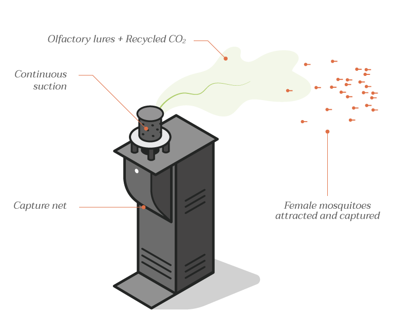 diagram illustrating how the Qista mosquito trap works